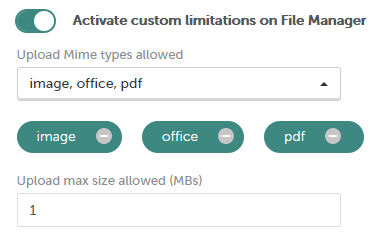 File manager limitations